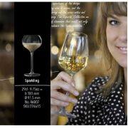 274615 Бокал для шампанского 290 мл Experts Colleciton Libbey